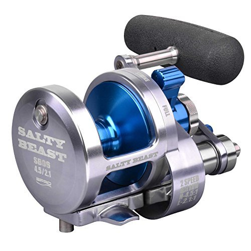 SPRO Salty Beast Silver 2-Speed 6000 2-Gang Multirolle -