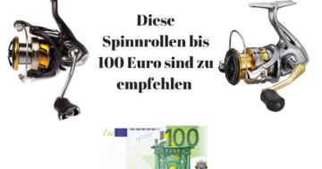 Spinnrolle bis 100 Euro