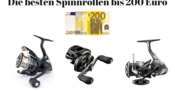 Spinnrolle bis 200 Euro